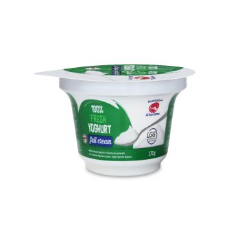 Natural Yoghurt 170 gm