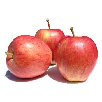 Apple Royal Gala Organic