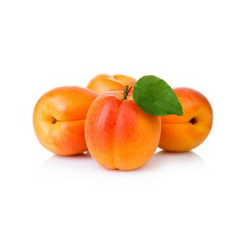 Apricot Lebanon
