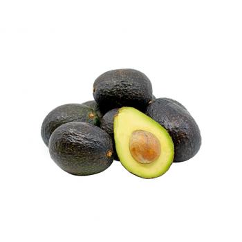 Avocado/Fuerte