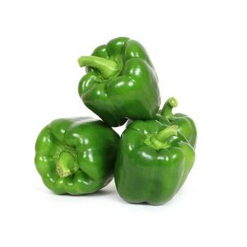 Capsicum Green Baby