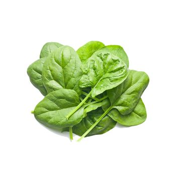 Spinach Baby