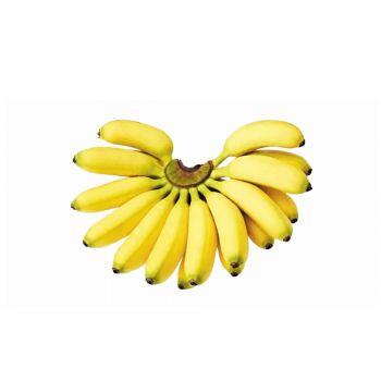 Banana Small