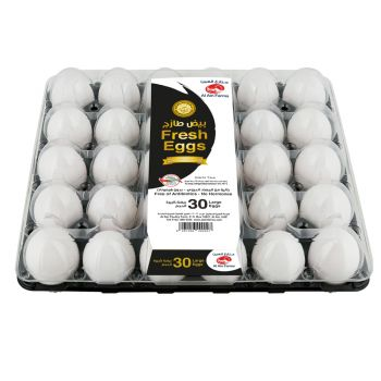 Eggs Large Tray-30