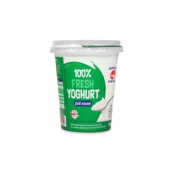Natural Yoghurt 400 gm