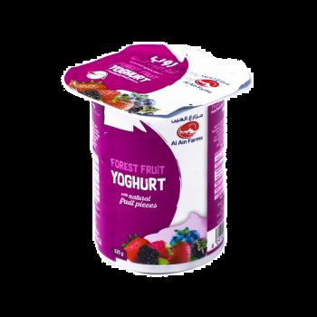 Stirred Yoghurt Forest Fruit 125 gm