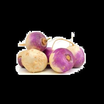 Turnip Baby