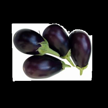 Eggplant Baby